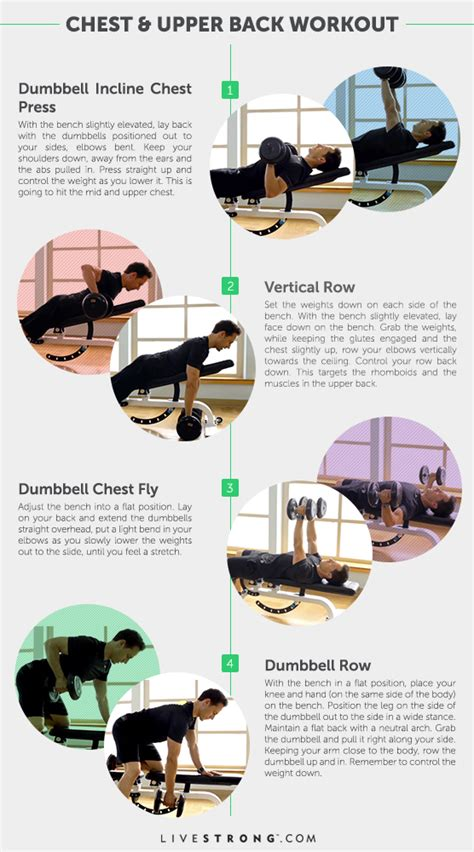 4 workout for chest back livestrong
