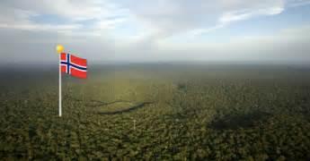 amazonas hängematte el amazonas en manos de noruega as 237 ha terminado una