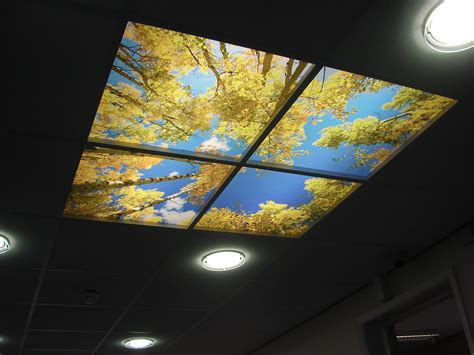 Ceiling Features by Skylight Feature Ceiling Mere Uk Ltd