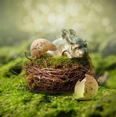 Gradient Nest flying hippo humor digital with animals hippo photoshop nest egg shell