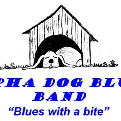 new blues songs alpha dog blues band listen and stream free music