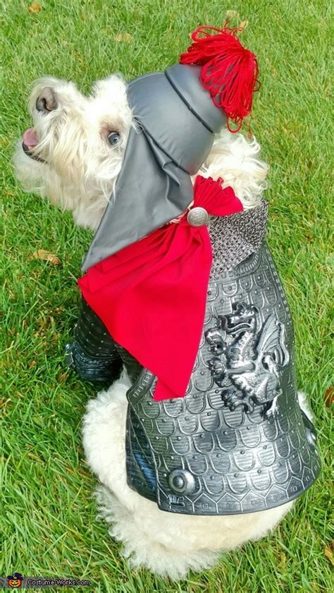 the puppy store st george george the slayer costume