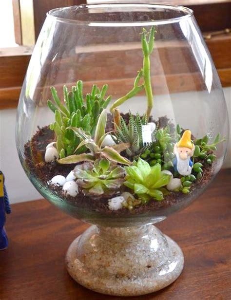 wine goblet terrarium  inches   bangalore