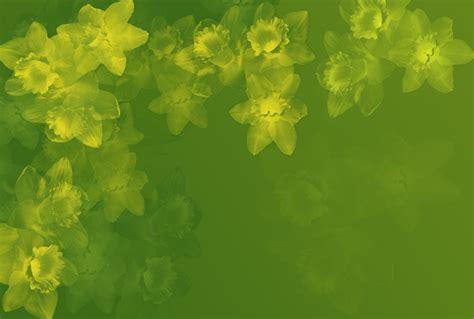 weihnachtsbaum java free illustration background osterglocken green free