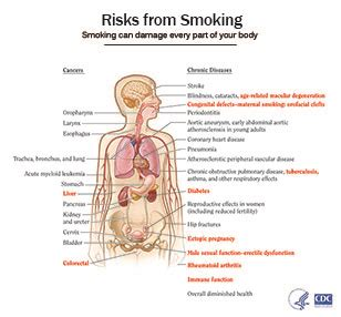 cdc fact sheet fast facts smoking tobacco use cdc smoking tobacco use download pdf