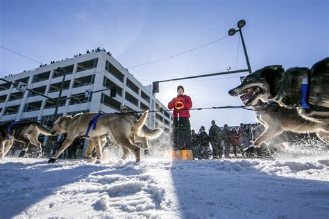 alaskan sled race dallas seavey unseats his as chion in the 2014