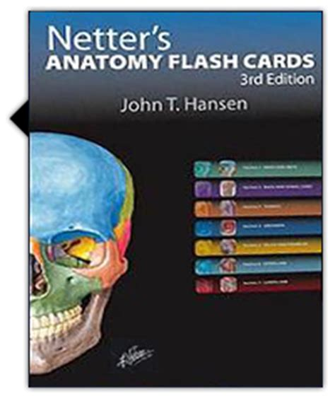 netter s anatomy flash cards e book netter basic science books netter s anatomy flash cards skyscape mobile