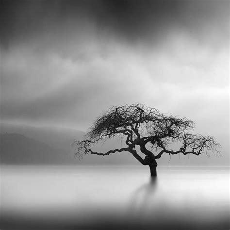 imagenes minimalistas naturaleza 17 mejores ideas sobre fondos de pantalla paisajes en
