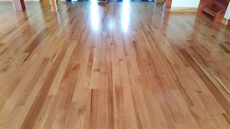 list of synonyms and antonyms of the word nutmeg floor stain