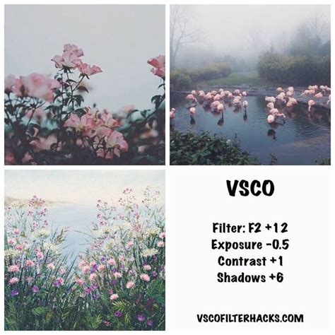 vsco nature tutorial best vsco filters for instagram feed vsco filter hacks
