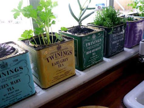 kitchen herb garden design kitchen herb gardens and salad walls my home rocks