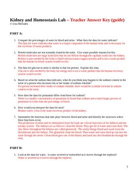 homeostasis and transport worksheet answers 100 homeostasis and transport worksheet homeostasis and the human advanced ck 12