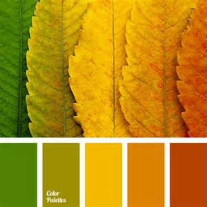 yellow orange color green and orange color palette ideas