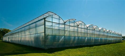 design criteria of greenhouse roughbrothers polyarch rd2 muli span galvanized steel