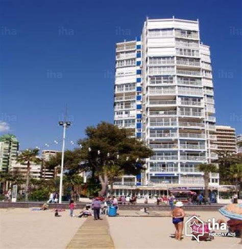 appartments in benidorm flat apartments for rent in a property in benidorm iha 41425