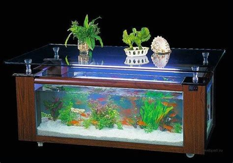 Feng Shui Aquarium In Living Room by Feng Shui For Room With Aquarium 25 Interior Decorating