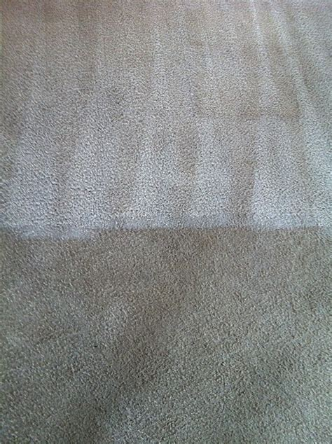 upholstery cleaning savannah ga carpet cleaner al savannah ga carpet vidalondon