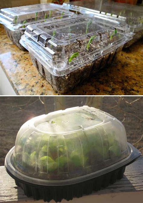 simple budget friendly plans  build  greenhouse