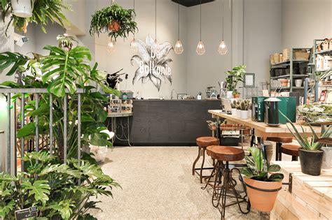 best plant store in amsterdam de balkonie balcony decoration store in amsterdam