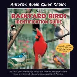 backyard bird identification guide by grout on apple