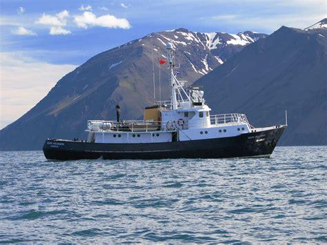 Donat Boat Zebec Lite northern light cruising company wildlife cruises from oban hans hansson
