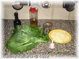 orecchiette con le cime di rapa ricetta fotografata orecchiette con le cime di rapa ricetta con foto di cucina