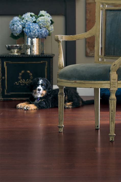 Rich Cognac Bamboo Flooring   Teragren