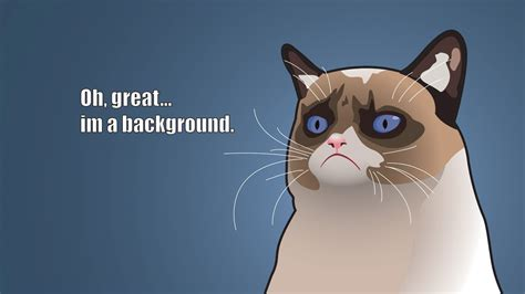 grumpy cat cartoon funny collection world