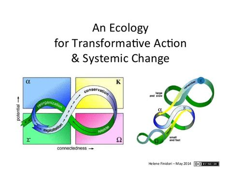 An Ecology For Systemic Change How To Foster And Empower