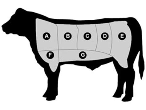 Black Kitchen Canisters a guide to choosing beef cuts of meat amp tender filet