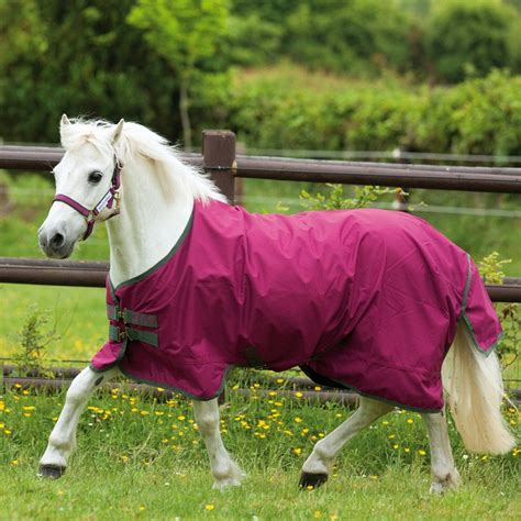 pony turnout rugs amigo 6 lite 0g pony turnout rug magenta thyme redpost equestrian