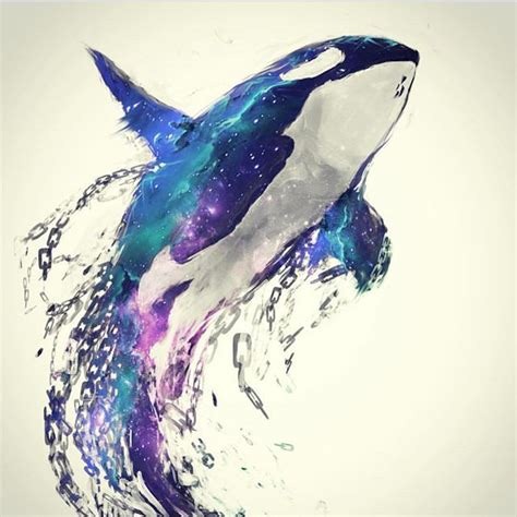 watercolor tattoo whale pin by richard dodd on orca