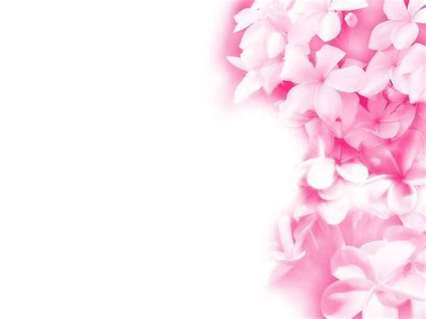Pink Floral Wallpapers   Wallpaper Cave