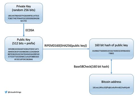Search Bitcoin Address How To Blockchain Bitcoin Addresses