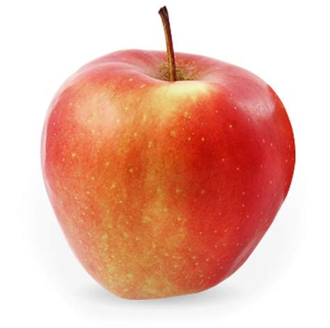 App L by Spartan The Apple Farm