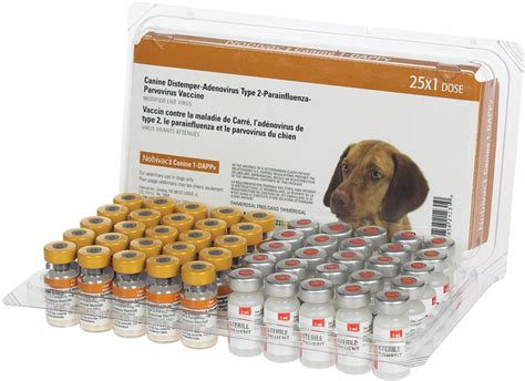 5 in 1 vaccine for puppies nobivac canine 1 dappv 5 way puppy vaccine jeffers pet