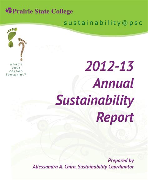 Annual Sustainability Report by History