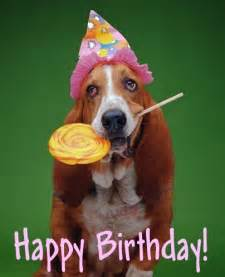 Happy Birthday Meme Dog - happy birthday dog meme generator