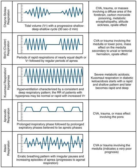 breathing pattern types tachypnea and normal breathing related keywords