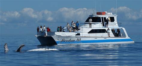 freedom boat club ta bay cost whale watching hervey bay gold coast sunshine coast and