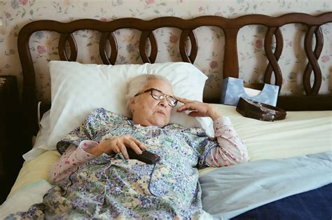 granny bed granny pods land in virginia backyards news planetizen