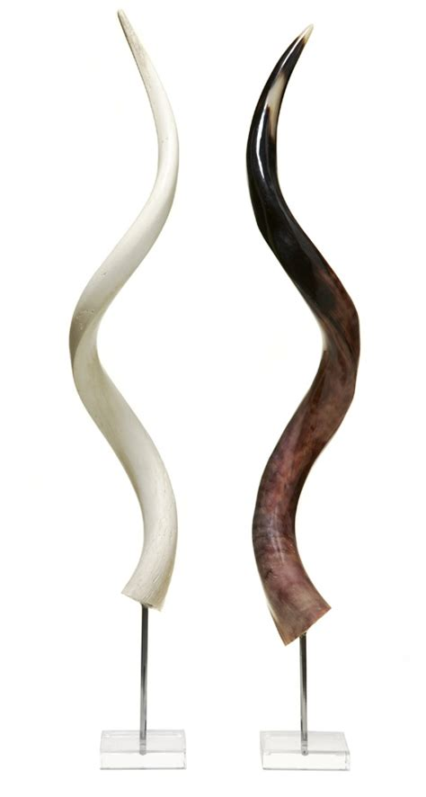Horn White kudu horn on stand lucite stand with polished kudu horns