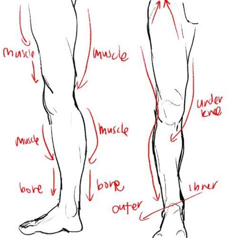 Drawing Legs by Image Result For Drawing Legs Drawing Legs