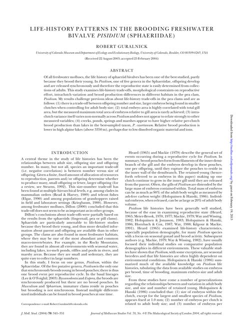 history pattern c life history patterns in the brooding freshwater bivalve