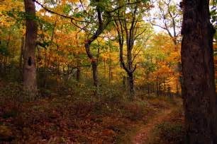 Cape Cod Hikes - cape cod foliage in provincetown places to stay cape cod