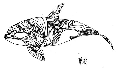 line drawing tattoos 52 whale line drawing whale tattoos