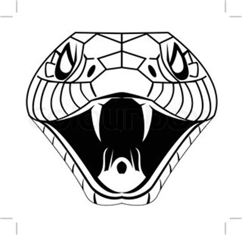 snake head vector colourbox