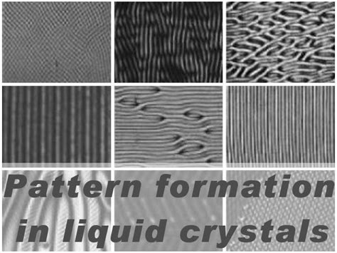 pattern formation in liquid crystals partially ordered systems