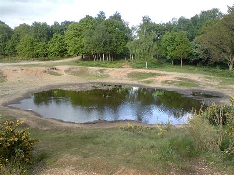 file vinegar pond wiki jpg