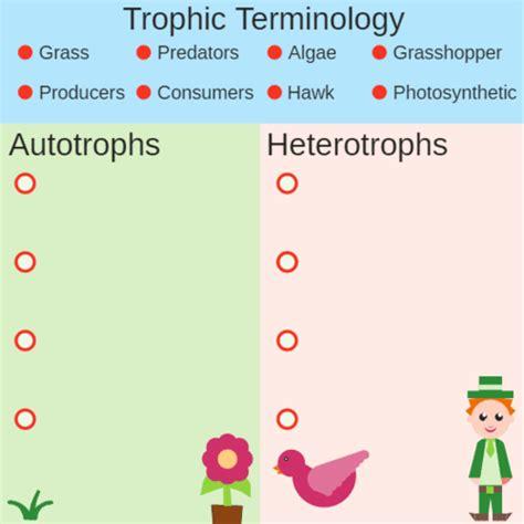 autotrophs vs heterotrophs worksheet autotrophs vs heterotrophs advanced ck 12 foundation